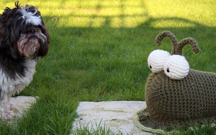 sidney the crochet slug and a shitzu