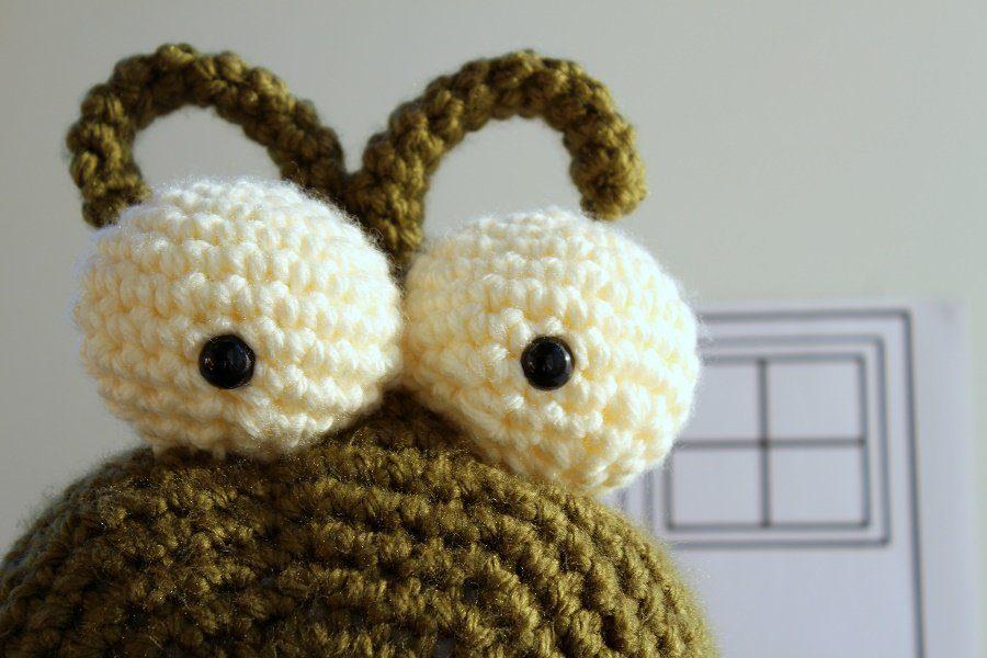cute giant slug eyes close up view.