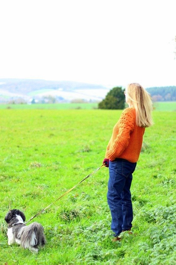 Week 13 lazy daisy jones River island orange knitwear walking the dog