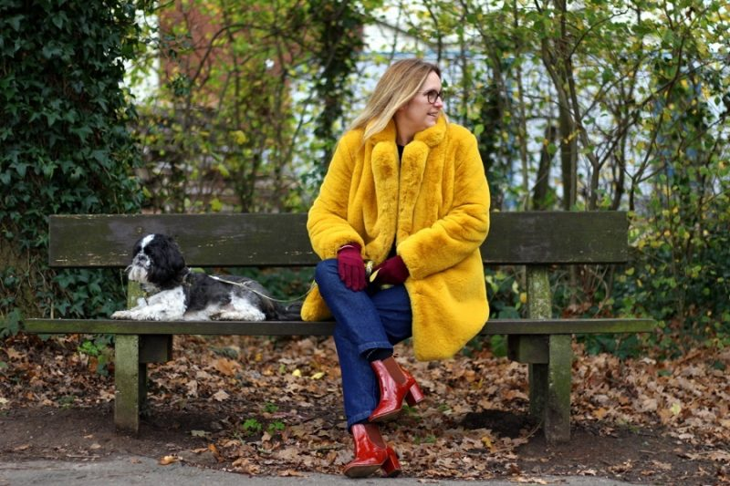 lazy daisy jones wears yellow faux fur to take the dog out!