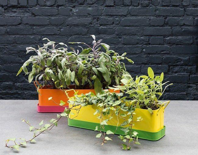 habitat s/s18 outdoor planters