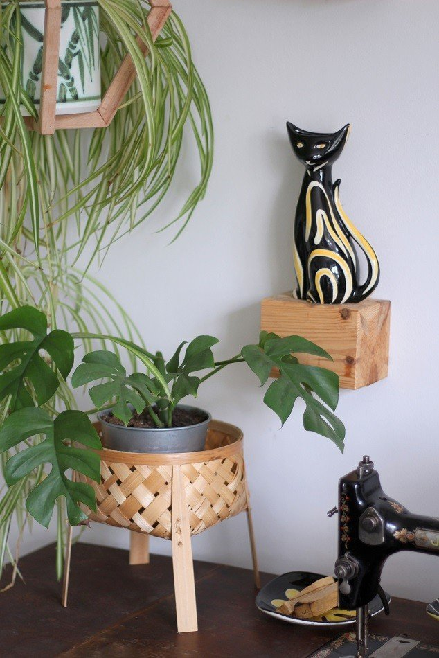 house plants and 1950's ceramic cats