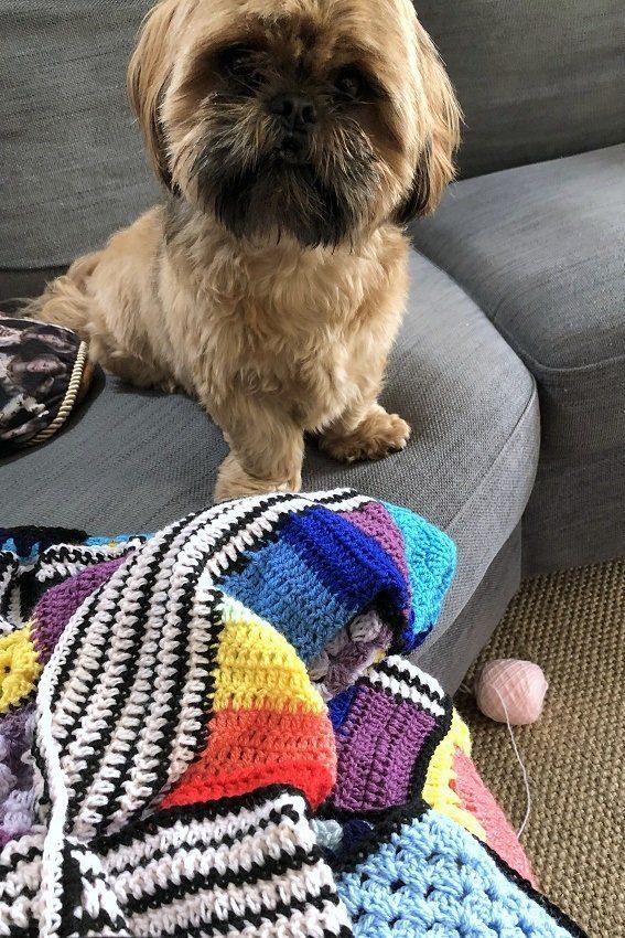 crochet granny blanket for teenagers